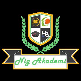 NİG Akademi